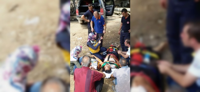 Kurbanlık Dananın Saldırısına Uğrayan Yaralıya Zorlukla Ulaşıldı
