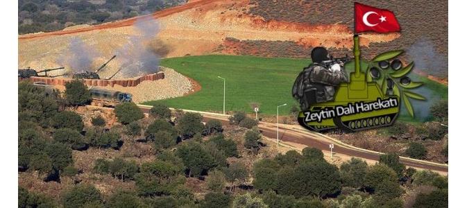 Afrin'de 15. Gün: TSK'dan Açıklama Geldi