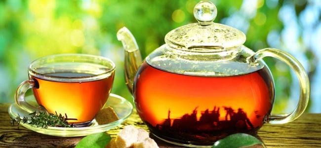 Hangi Hastalığa Hangi Bitki Çayı İyi Geliyor?
