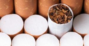 Sigara Erken Ölümlerde Rol Oynuyor