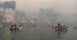 Şok İddia:Yunanistan'daki Yangını ABD Çıkarttı,Suçu Türkiye'ye Atacak!