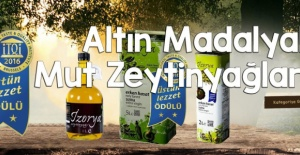 Naturel Sızma Zeytinyağı 5 lt Fiyatı