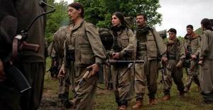 PKK Sincar'dan Çekilmedi Mi? Flaş İddia