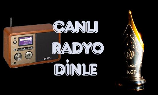 Müziğin Türkçesi Pal Fm'de!