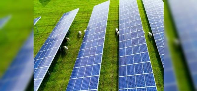Solar Paneller Nasıl Çalışır?