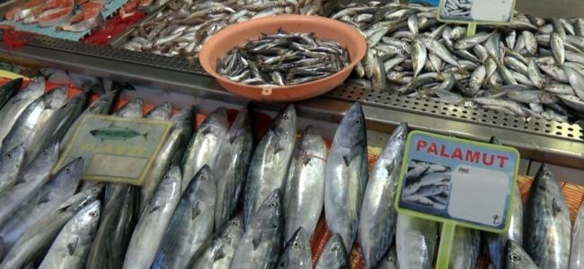 Karadeniz'de Balık Tezgâhlarda, Hamsi Bekleniyor