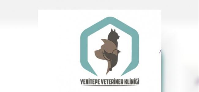 Yenitepe Veteriner Kliniği