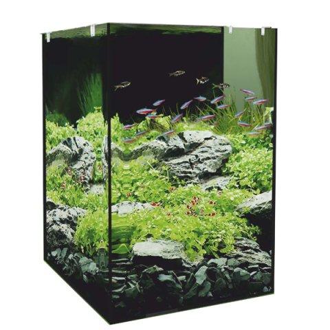 Cam Akvaryum Fiyatları Ve Modelleri İçin Seçenekler Pettema'da