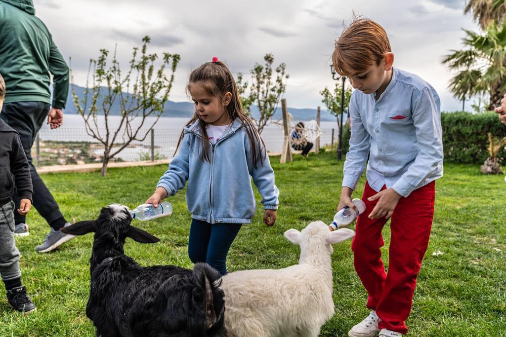 ALI'S FARM BOUTIQUE HOTEL & SPA GEÇMİŞİ