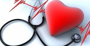 Organlar Nakil İçin 24 Saat Korunabilecek