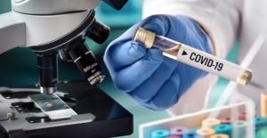 Koronavirüste ilk yedi gün uyarısı!