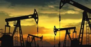 Türkiye'nin Petrol İthalatı Temmuzda Yüzde 6,1 Arttı